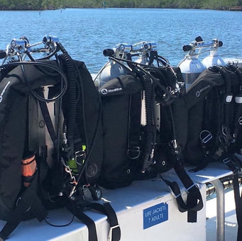 Stay-and-Train dive packages include top quality dive rental gear